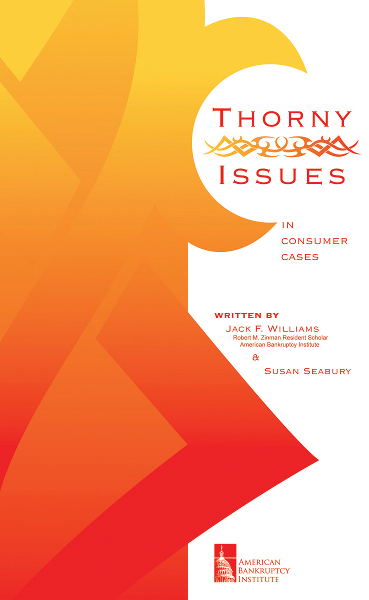 Thorny Issues in Consumer Bankruptcy Cases